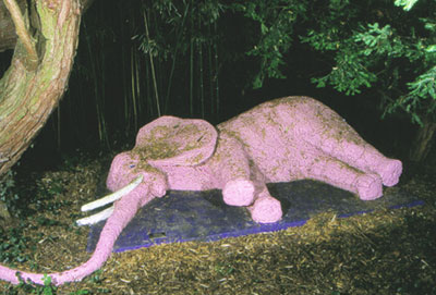 http://talusite.free.fr/artistes/imagesTravauxArtistes/elephant.jpg